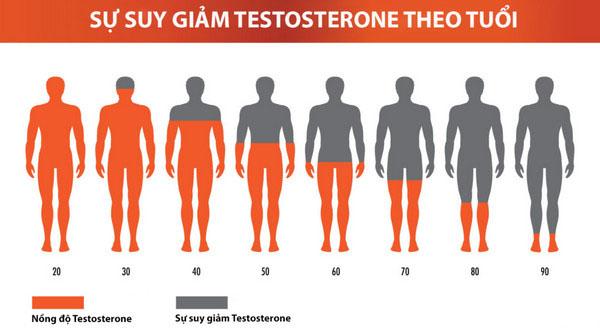 Lượng testosteron cũng theo tuổi tác mà có sự thay đổi